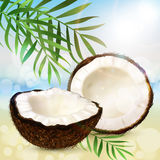 Coco and palm leaves. Realistic coconut, two halves of coco and palm leaves on a sunny summer beach background. Vector stock illustration