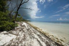 Coco plum beach florida keys royalty free stock photography