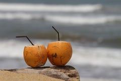 Coco por la playa Imagen de archivo libre de regalías