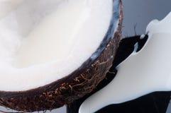Coco pulp Stock Image