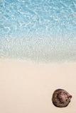 Coco que miente en la playa Imagen de archivo libre de regalías
