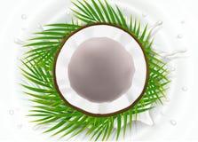 Coco quebrado en chapoteo de la leche ilustración del vector