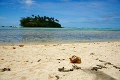 Coco quebrado na praia tropical imagem de stock royalty free