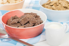 Coco Shreddies Stock Images