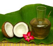 Coco y petróleo de coco Fotos de archivo libres de regalías