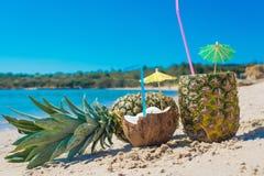Coco y piñas por la orilla Foto de archivo