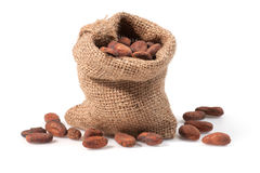Cocoa bean. Close up view of Cocoa bean on bag. Shallow depth of field Stock Photos