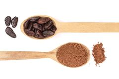 Cocoa bean and cocoa powder in wooden spoon isolated on white background top view Stock Images