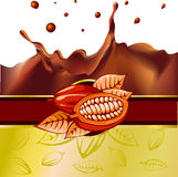Cocoa bean design with chocolate splash - vector Stock Photos