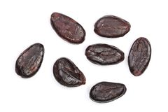 Cocoa bean isolated on white background close-up top view Stock Photography