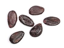 Cocoa bean isolated on white background close-up top view Stock Image