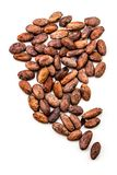 Cocoa bean with leaf isolated on white background top view stock images
