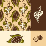 Cocoa bean with leaves and vanilla flower with pods Royalty Free Stock Photo