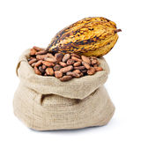 Cocoa bean and pod. On bag Royalty Free Stock Images