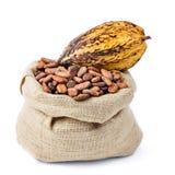 Cocoa bean and pod. On bag