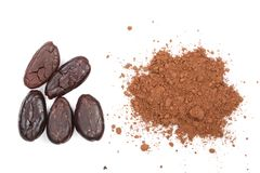 Cocoa bean and cocoa powder isolated on white background top view Royalty Free Stock Photography