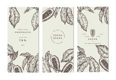 Cocoa bean tree banner collection. Design templates. Engraved style illustration. Chocolate cocoa beans. Vector. Cocoa bean tree banner collection or packaging vector illustration