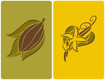 Cocoa bean and vanilla pods. Cocoa bean with leaves and vanilla flower with pods. Vector illustration Stock Photos