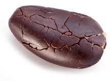 Cocoa bean. On a white background Royalty Free Stock Photo