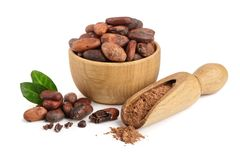 Cocoa bean in wooden bowl and cocoa powder in scoop isolated on white background top view Stock Images