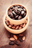 Cocoa beans Royalty Free Stock Photo
