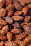 Cocoa beans background Royalty Free Stock Image