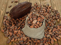 Cocoa beans in a bag Stock Photography