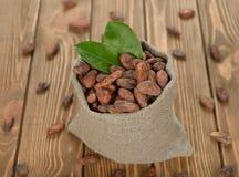 Cocoa beans in a bag Stock Photos