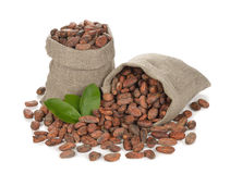 Cocoa beans in a bag Stock Photo