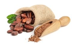 Cocoa beans in bag with leaves and cocoa powder in scoop isolated on white background.  Stock Photos