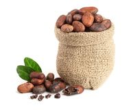 Cocoa beans in bag with leaves isolated on white background.  Royalty Free Stock Photos