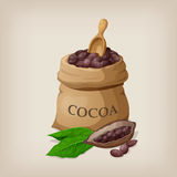 Cocoa beans in a bag. Royalty Free Stock Photography
