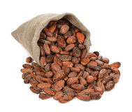 Cocoa beans in a bag Royalty Free Stock Photos