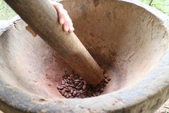 Cocoa beans being grounded in a mortar Stock Photos