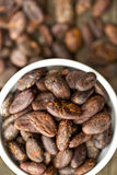 Cocoa beans in bowl Stock Image