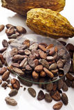Cocoa beans in bowl and cocoa fruits Stock Photo