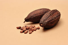 Cocoa beans on a brown background Royalty Free Stock Images