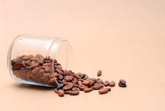 Cocoa beans on a brown background Royalty Free Stock Photo