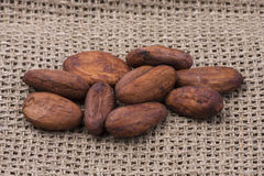 Cocoa beans on burlap. Shallow depth of field. A variety of cocoa beans stock photography