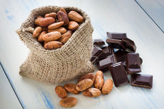 Cocoa beans and chocolate Royalty Free Stock Image