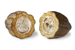 Cocoa beans in a cacao pod Royalty Free Stock Photography