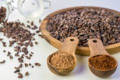 Cocoa beans, cacao powder - close up Royalty Free Stock Image