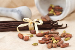 Cocoa beans, cardamom and vanilla beans Stock Photography