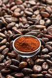 Cocoa beans and cocoa powder Royalty Free Stock Photo