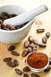 Cocoa beans and cocoa powder Royalty Free Stock Photography