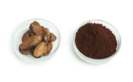 Cocoa beans and cocoa powder Stock Images