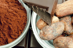 Cocoa beans, cocoa powder in bowls and chocolate bar Royalty Free Stock Image