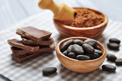 Cocoa beans and cocoa powder Royalty Free Stock Image