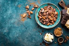 Cocoa. Cocoa beans, dark bitter chocolate chunks, cacao butter and cocoa powder Royalty Free Stock Image