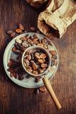 Cocoa beans Stock Photo
